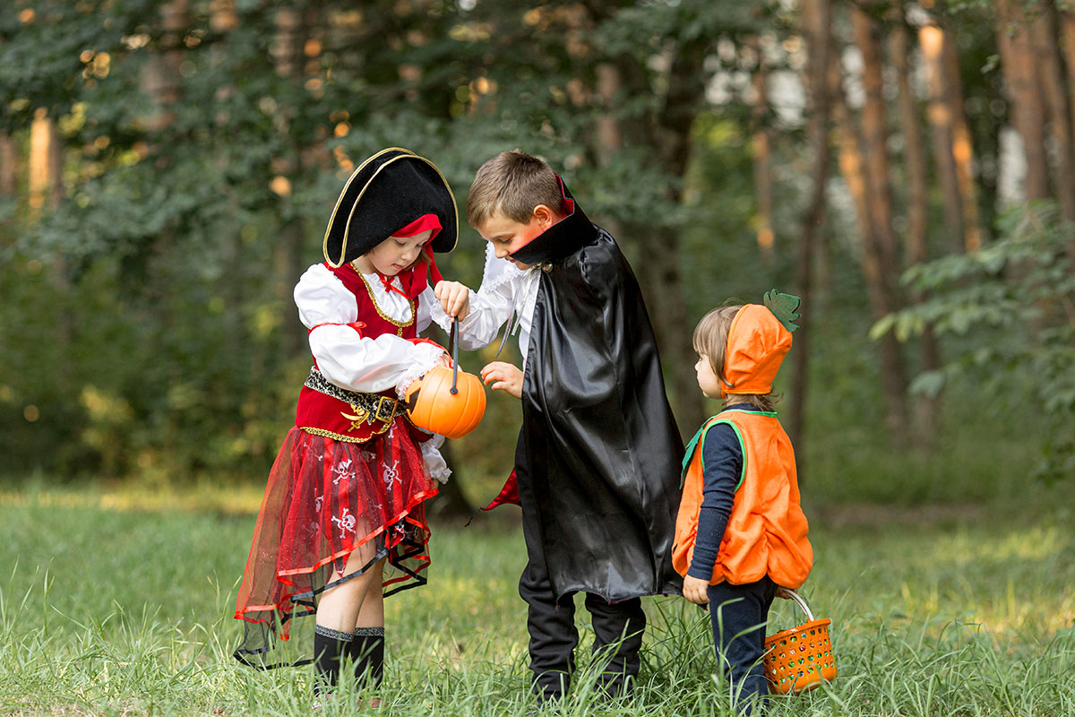 Children looking in their trick or treat bags